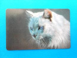 KOSKA  ( Russia Old Chip Card) Cat Chat Gato Katze Felino Matou Gatto Gatta Cats Chats Chatte Fauna Faune Animals Animal - Russia
