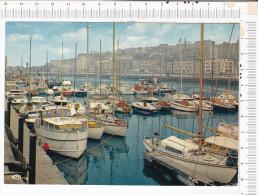 BOULOGNE Sur  MER   -   Le  Port De  Plaisance - Boulogne Sur Mer