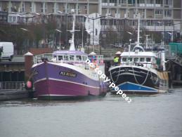 boulogne sur mer -le port -chalutiers-�toile du berger-morlaix-MX905646-P AX DEI-BL734605- photo cpm