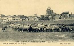 SAINTES-MARIES DE LA MER Vue Générale (C7411) - Saintes Maries De La Mer
