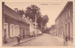 VINDERHOUTE : De Dorpstraat - Lovendegem