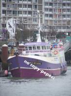 boulogne sur mer -le port -chalutier-�toile du berger-morlaix-MX905646- photo cpm
