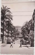 TOULON ,var,l´avenue COLBERT,avant Sa Rénovation,1950,scooter Italien,une Avenue Déja Bien Animée,édition Bouvet - Toulon