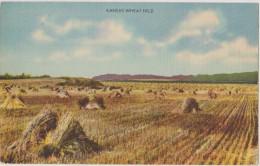 Cpa,états-unis,KANSAS,mid Dle  West,near Nebrascaca,weat Field,agricilture,métier De Paysans Au Usa,ramassage Du Foin,ra - Etats-Unis