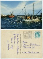 Krabbenfischer - Schiffe