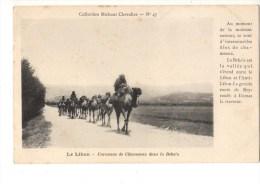 C P A--LE LIBAN--caravane De Chameaux Dans La Bela'a--voir 2 Scans - Libano