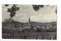 11464 - Modra - Tchéquie
