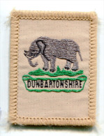 United Kingdom DUNBARTONSHIRE Scout Ribbon - Scouting