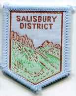 Scotland UK SALISBURY DISTRICT Scout Ribbon - Scouting