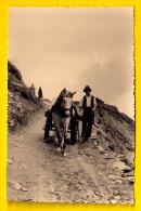 FOTOKARTE BAUER PFERD GESPANN TIROL ÖSTERREICH CARTE PHOTO Gevaert ATTELAGE Paysan Cheval Boer Paard Horse Caballo  3991 - Wagengespanne