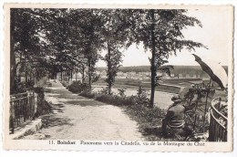 Watermael Boitsfort Watermaal Bosvoorde Panorama (11) Vers La Citadelle Vu De La Montagne Du Chat Dessinateur - Watermael-Boitsfort - Watermaal-Bosvoorde