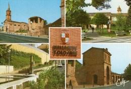 1 Cp Villeneuve Tolosane - France