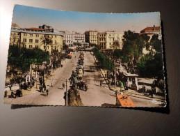 Carte Postale Ancienne : CONSTANTINE : Avenue Pierre Liagre, Animé, Voitures Années 1950 - Constantine