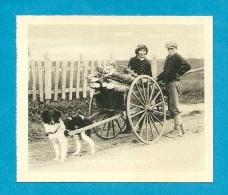Mini CPSM Small Card CANADA - A Habitant Dog Card * Attelage De Chien PQ P. Q. Québec * Voiture à Chiens - Gaspé