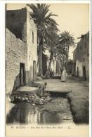 Carte Postale Ancienne Alg�rie - Biskra. Une rue de l'Oasis Bad Darb
