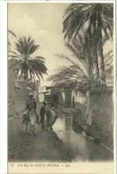 Carte Postale Ancienne Alg�rie - Biskra. Une rue du Vieux Biskra