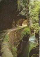 Les Alpes En Couleurs Naturelles - Le Vercors . La Route à L'intérieur Des Grands Goulets Et La Vernaison. - Les Grands Goulets