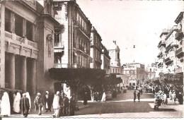 MOSTAGANEM (ALGERIE) Avenue du 1er de Ligne en 1955    CPSM  PF