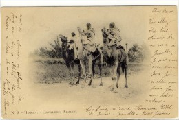 Carte Postale Ancienne Alg�rie - Biskra. Cavaliers Arabes. Dromadaires