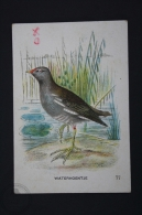 Old Trading Card/ Chromo Topic/ Theme Birds - Netherland Collection - Waterhoentje/ Common Moorhen - Autres