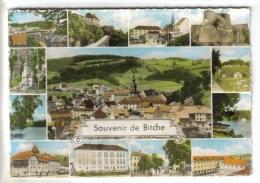 CPSM BITCHE (Moselle) - Souvenir De....12 Vues - Bitche