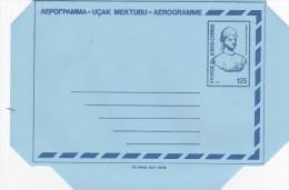 Cyprus 1980 Unused Aerogramme - Unclassified