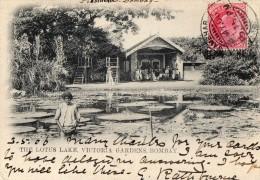 BOMBAY   Jardins Victoria - Inde