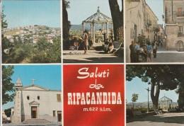POTENZA - RIPACANDIDA - SALUTI DA.... - Potenza