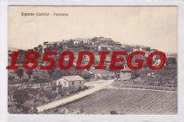CAPITONE - PANORAMA  F/PICCOLO VIAGGIATA ANIMAZIONE - Perugia