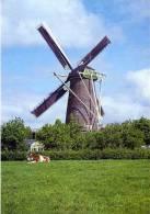 WOUW Bij Roosendaal (Noord-Brabant) - Molen/moulin - Mooie Opname Van Molen De Arend Opgezeild En In Werking In 1967 - Roosendaal