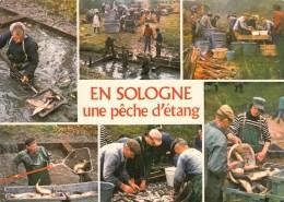 Pêche En Sologne Une Pêche D'étang - Multivues - Francia