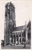 Belgium Malines Cathedrale Saint Rombaut - Malines