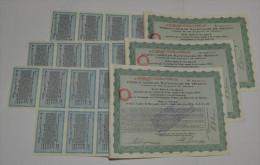 3 Titres, Ferrocarriles Nacionales De Mexico - Chemin De Fer & Tramway
