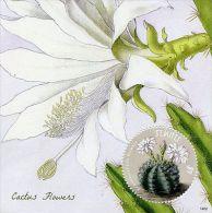 St Kitts 2014 MNH Cactus Flowers 1v S/S Flora Echinocactus Damsii
