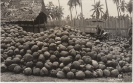 Pile Of Coconuts Hut Old Truck With Japanese(?) Chinese(?) Characters On Side, C1940s/50s(?) Vintage Real Photo Postcard - Postcards