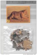 MINI Box & PUZZLE 24 Pc. AFRICAN WILD LIFE LION LIONS CUBS Whelp FAUNA AFRICA - Vieux Papiers