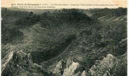 CPA 35 PAIMPONT LA FORET DE PAIMPONT LE VAL SANS RETOUR 1915 - Paimpont