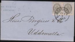 1875. Bi-coloured. 3 Øre Grey/light Ultramarine. Perf. 14x13½. Normal Frame PAIR On Cov... (Michel: 22IYAa) - JF106453 - 1864-04 (Christian IX)
