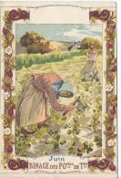 Image Chromo Les Mois De L'Année JUIN Binage Des Pommes De Terres ( Pomme De Terre Agriculture Ferme )  ILLUSTRATION - Trade Cards