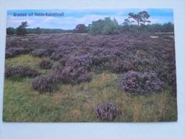 Groeten Uit Heide-Kalmthout / Anno 19?? ( Zie/voir Foto Voor Details ) !! - Kalmthout