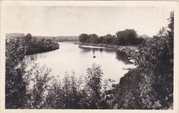 France Vichy L'Allier Au Parc Des Bourins 1947 Photo - Vichy