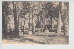 Carte De Grenoble  Jardin Des Plantes  ( Recto Verso ) - Grenoble