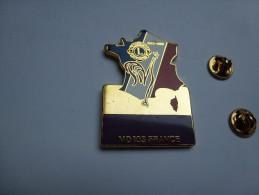 Superbe big pin�s , Lions Club France , coq