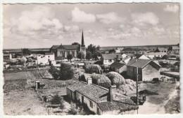 85 - NOTRE-DAME-DE-MONTS - Panorama Vu Du Moulin - JP 817 - Autres Communes