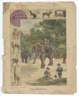 Elephant Protège-cahier Fin 19 ème Jardin D'Acclimatation Didactique. Etat Moyen Mais RR. - Animaux