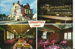 45 Cpsm Cercottes Hotel De La Foret Multivues - France
