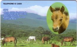 CORRE DU SUD SOUTH KOREA CHIP CARD CHEVAL HORSE 3000U UT RARE - Korea, South