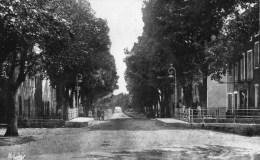 45Hy    83 Aups Avenue G. Clemenceau - Aups