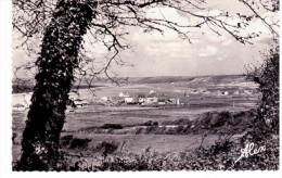 Siouville Plage - Panorama Sur Les Villas Et La Plage - Zonder Classificatie