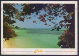 CUBA POSTCARD - Holguin Playa Guardalavaca, Unused. - Ansichtskarten